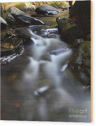 River  Wood Print by Mariusz Czajkowski