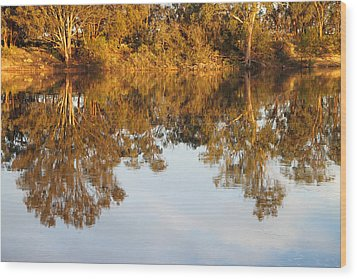 River Murray Reflections Early Evening Wood Print by Carole-Anne Fooks