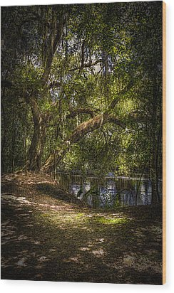 River Oak Wood Print by Marvin Spates