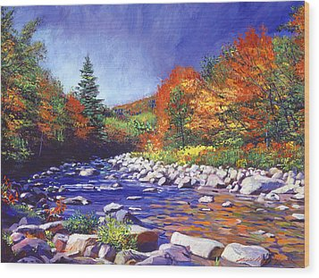 River Of Autumn Colors Wood Print by David Lloyd Glover