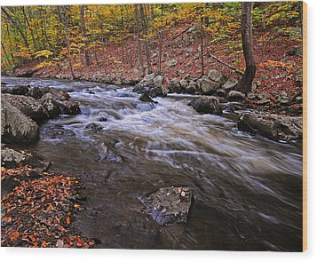 River Of Color Wood Print by Dave Mills