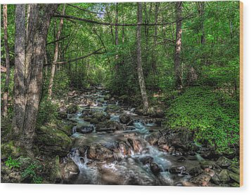 Jones Gap State Park South Carolina Wood Print