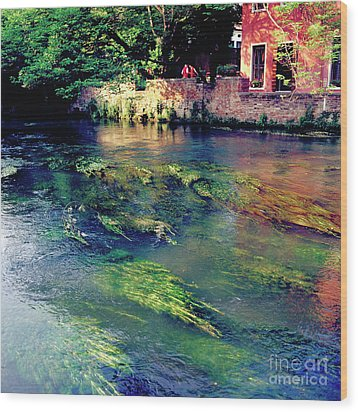 River Sile In Treviso Italy Wood Print by Heiko Koehrer-Wagner