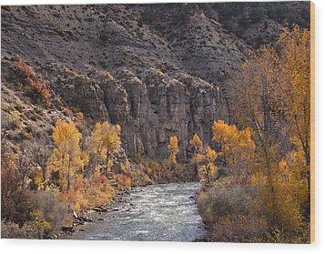 River Through The Aspen Wood Print by David Kehrli