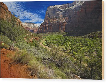 Wood Print featuring the photograph River View In Zion Park by Richard Wiggins