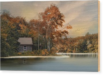 River View Wood Print by Robin-Lee Vieira