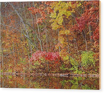 Riverbank Beauty Wood Print by James Hammen