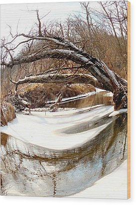 Rivers Eye Wood Print by Sharon Costa