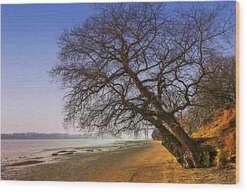 Riverside Wood Print by Svetlana Sewell