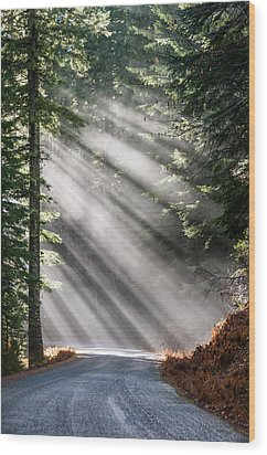 Wood Print featuring the photograph Road Less Travelled by Brian Bonham