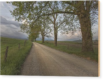 Road Not Traveled II Wood Print by Jon Glaser