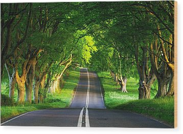 Road Pictures Wood Print by Marvin Blaine