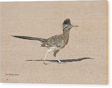 Wood Print featuring the photograph Road Runner On The Road by Tom Janca