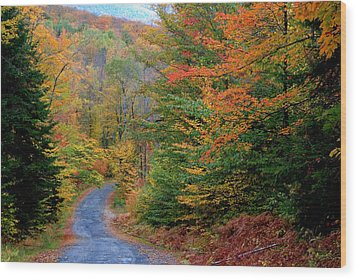 Wood Print featuring the photograph Road Through Autumn Woods by Larry Landolfi