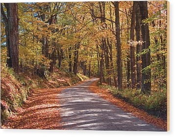 Wood Print featuring the photograph Road Through Woods by Larry Landolfi