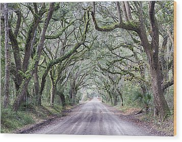 Road To Botany Bay Wood Print