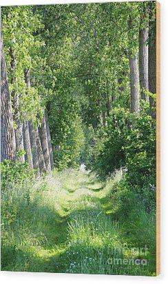 Road To Bruges Wood Print by Carol Groenen