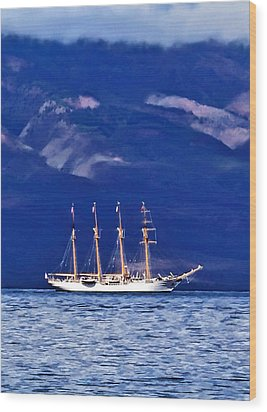 Wood Print featuring the photograph Road To Lahaina 34 by Dawn Eshelman