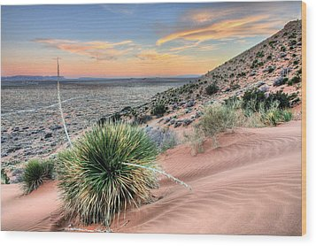 Road To Mexico Wood Print by JC Findley