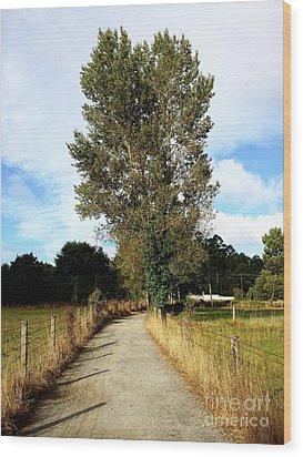 Road To Santiago Wood Print by Marguerita Tan