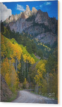 Road To Silver Mountain Wood Print by Inge Johnsson