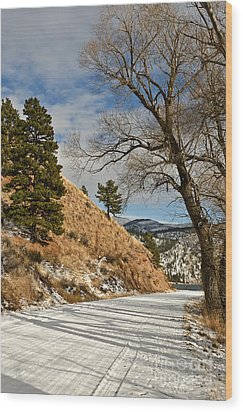 Wood Print featuring the photograph Road To The Lake by Sue Smith