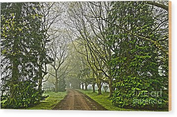 Road To The Manor House Wood Print