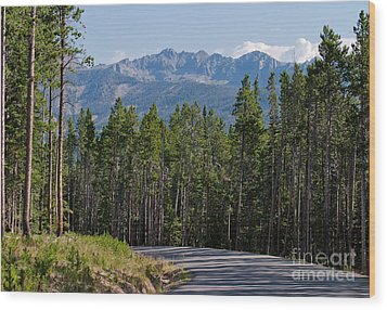 Wood Print featuring the photograph Road To The Mountains by Charles Kozierok