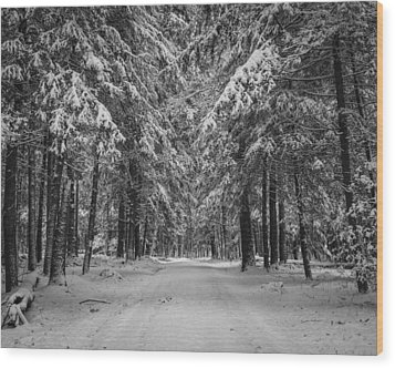 Road To Winter Wood Print by Brian Young
