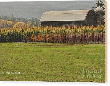 Roadside Barn Wood Print by Tonia Noelle