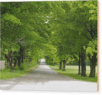 Roadway Wood Print by Susan Crossman Buscho