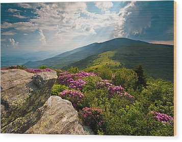 Roan Mountain From Appalachian Trail Near Jane's Bald Wood Print