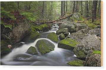 Roaring Brook Wood Print by Patrick Downey