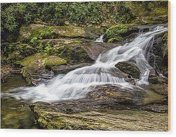 Roaring Fork Falls 01 Detail Wood Print