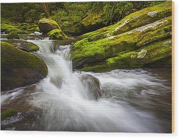 Roaring Fork Great Smoky Mountains National Park Cascade - Gatlinburg Tn Wood Print by Dave Allen