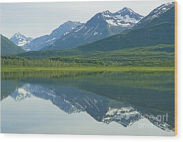 Wood Print featuring the photograph Robe Lake by Nick  Boren