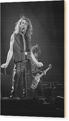 Robert Plant And Jimmy Page Wood Print by Timothy Bischoff