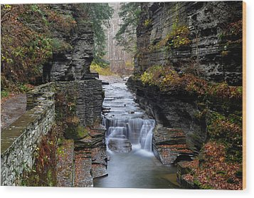 Robert Treman State Park Wood Print by Frozen in Time Fine Art Photography