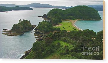 Roberton Island Wood Print by Michele Penner