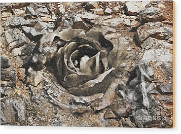 Rock And Rose 2 Wood Print by Evgeniy Lankin