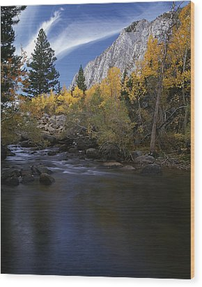 Rock Creek Canyon Gold Wood Print