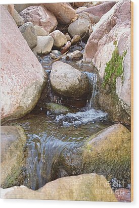 Wood Print featuring the photograph Rock Creek by Kerri Mortenson