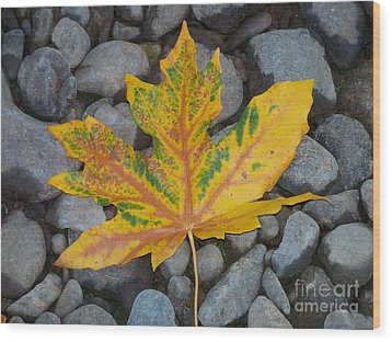 Wood Print featuring the photograph Rock Creek Leaf by Chalet Roome-Rigdon