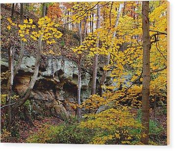 Rock Fall Gorge Wood Print
