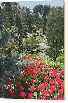 Wood Print featuring the photograph Rock Garden - Hamilton - Ontario by Phil Banks