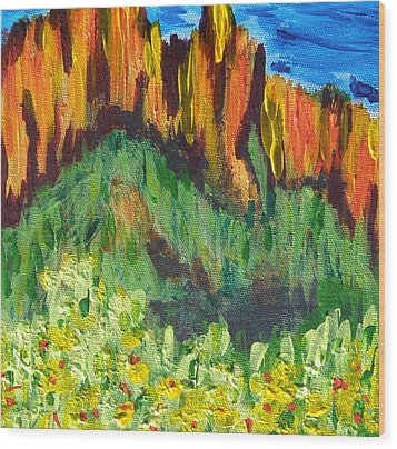 Rock Of Many Colors Wood Print by Marcia Weller-Wenbert