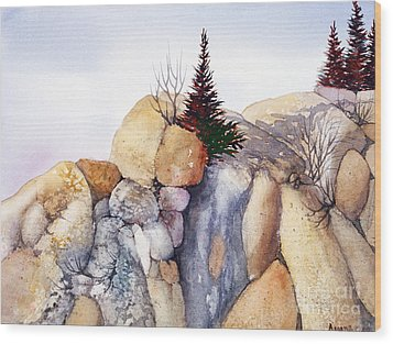 Rock Patterns Turnagain Wood Print