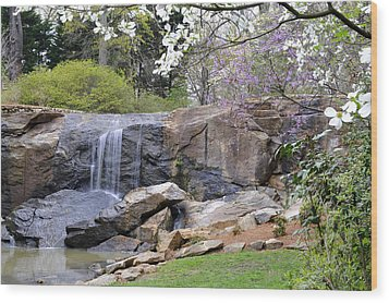Rock Quarry Falls In Greenville Sc Cleveland Park Wood Print