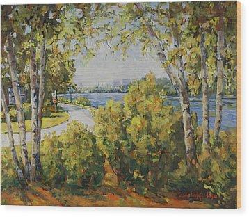 Rock River Bike Path Wood Print by Alexandra Maria Ethlyn Cheshire