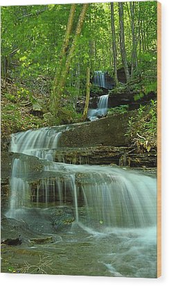 Rock Run Tributary Falls #1 Wood Print